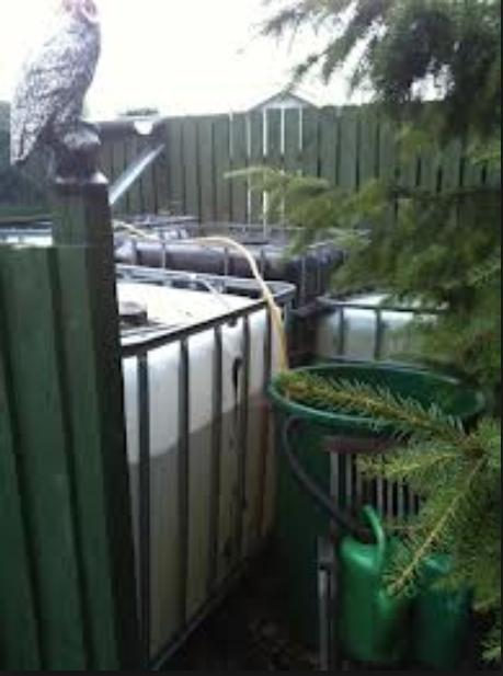 Opsamling af regnvand i store 1000l beholdere