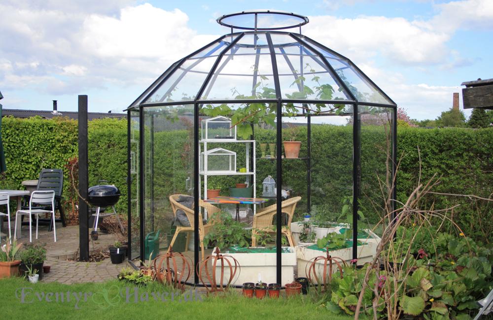 Classica Pavillon 12 kantet fyldt med tomater og agurker