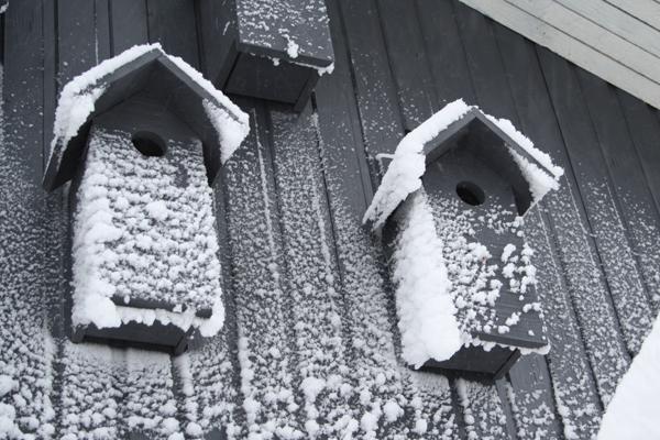 eventyrlig-sne-2014-f