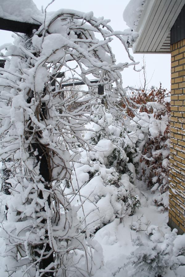 eventyrlig-sne-2014-g