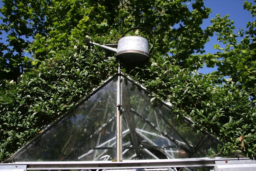 Vandkande som dekoration på drivhuset.