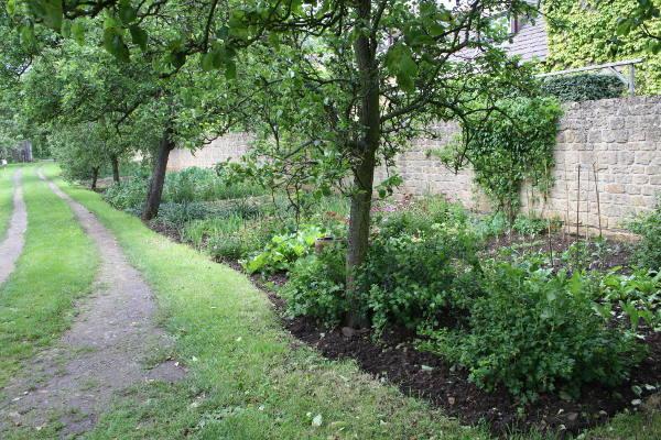 køkkenhave fra en walled garden i Chipping Camden