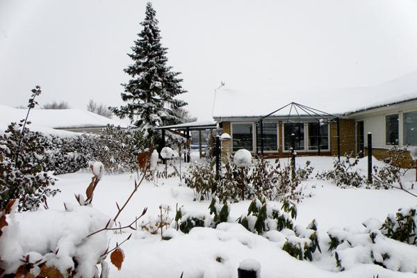 Vinterhaven efter snestorm