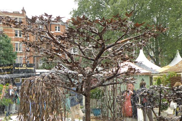 Stort kobbertræ fra Eventyr Haver's webshop