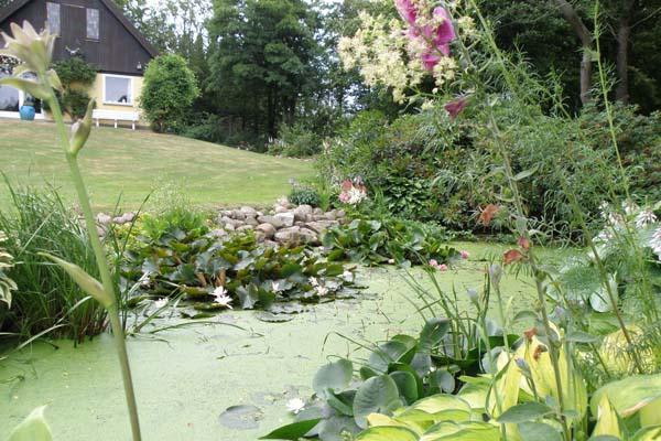 Else's have med den skønne naturlige sø
