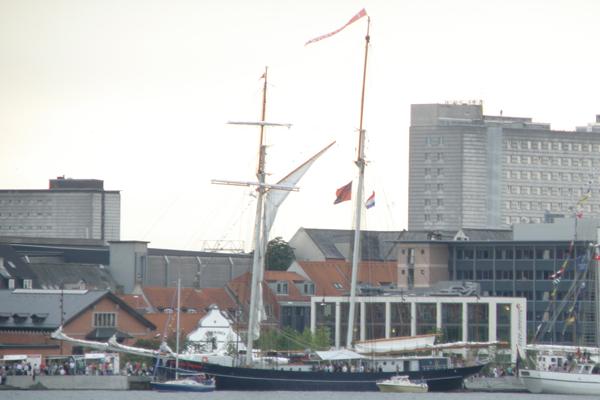 Wylde Swan fra Holland