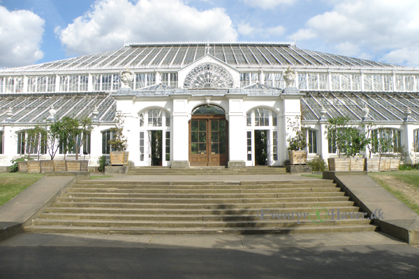 Kew Gardens -Temperate House