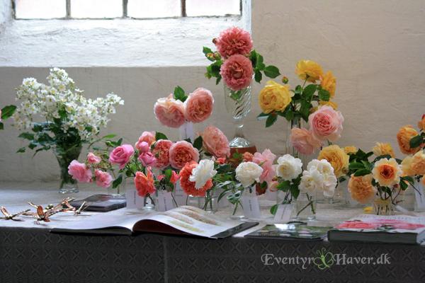 De engelske roser