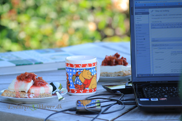 Sommerkage - nøddebund med is og guddommelig marmelade