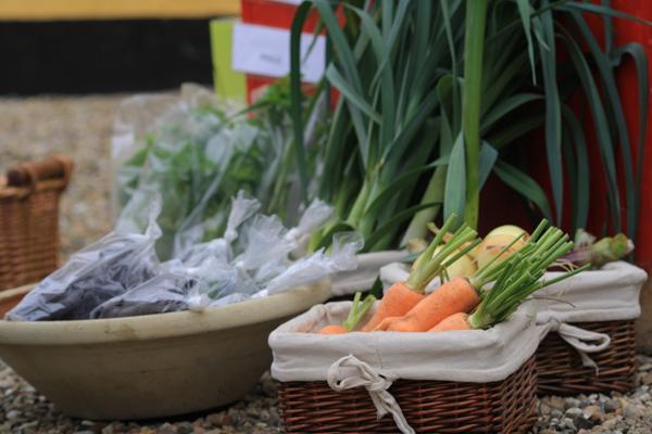 Lækre grøntsager af egen avl hos Solhøj Planter