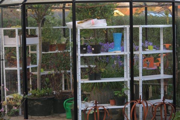 Pavillonen er fyldt til randen med frost følsomme planter
