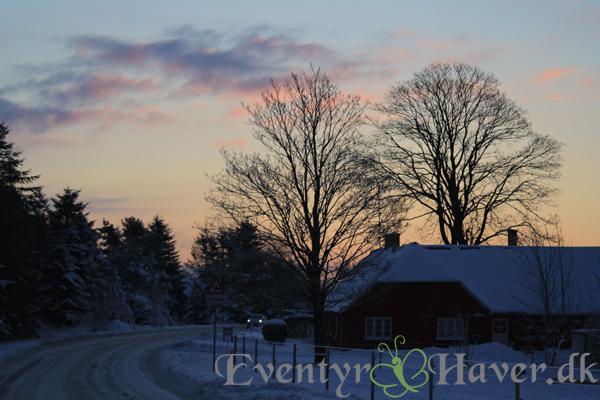 smuk solopgang over byen Langholt