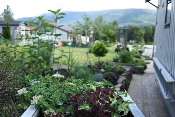 En skøn spaltehave i Husnes, Norge.