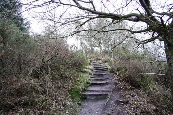 Der er trapper flere steder oppe på Lien skrænten