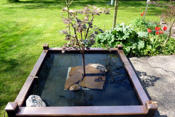 Rindende kobbertræ placeret i et hjemmelavet bassin i træ.