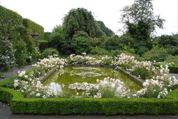 Bassinet i den hvide have hvor Titania skal stå