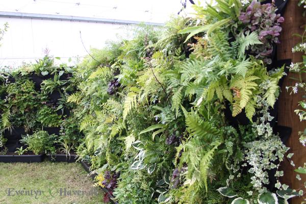 Planter på lodrette flader - meget dekorativt.