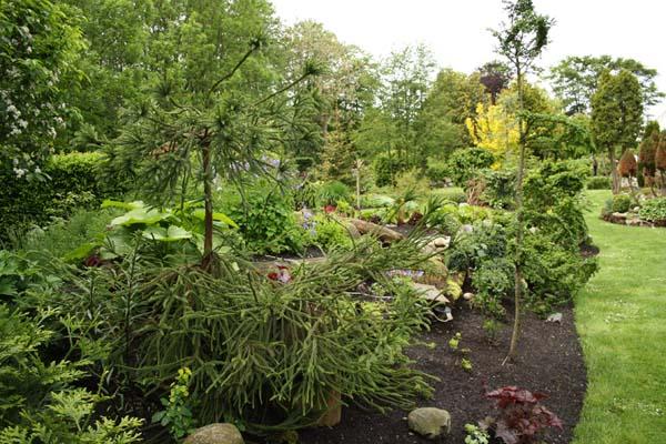 Der er flere bassiner i haven i ryaa
