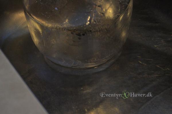 Gør islygten klar med varmt vand, så kanten bliver fin og afrundet - islygter
