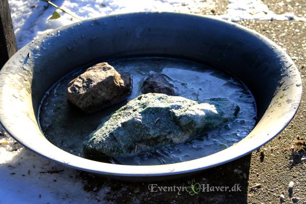 frosste fuglebad/drikkevand