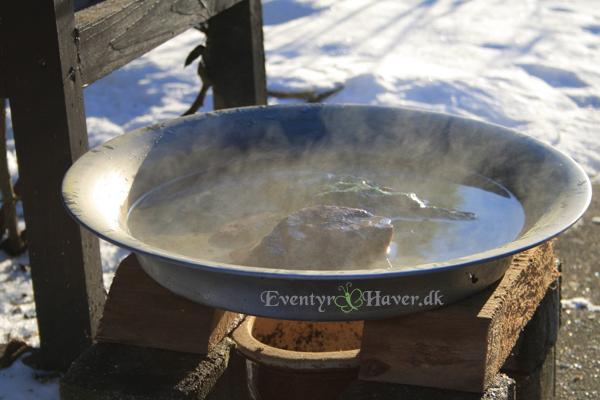 Hæld kogende vand i det fuglebadet, det køler hurtigt af