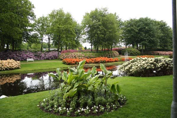 Så smukt tager Rhododendronparken i Brønderselv sig ud i år.