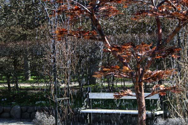 Egeblade og navnet Titania fra en skærsommernats drøm gør træet helt eventyrligt