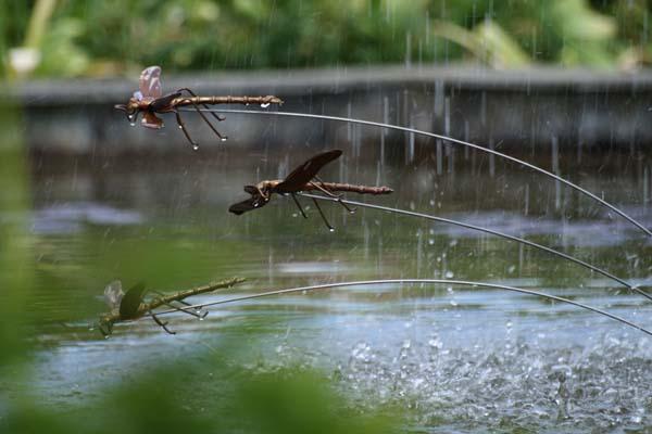 De smukke guldsmede ved Titania det rindende træ